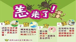 恙蟲病流行季將至 衛生局籲請做好防護措施