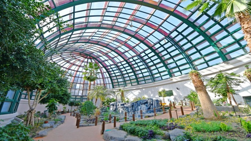 韓國首座體驗型蝴蝶生態公園重新開放