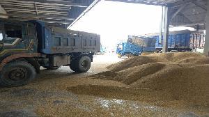 高市農業局籲請農民 注意強降雨加強防範